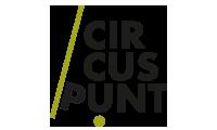 Circuspunt